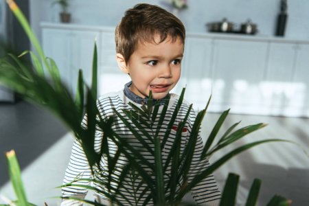 Photo for Selective focus of adorable little boy standing near green houseplant at home - Royalty Free Image