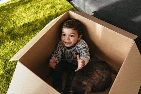 Photo pour Heureux petit enfant avec britannique chat poil long assis dans une boîte en carton - image libre de droit