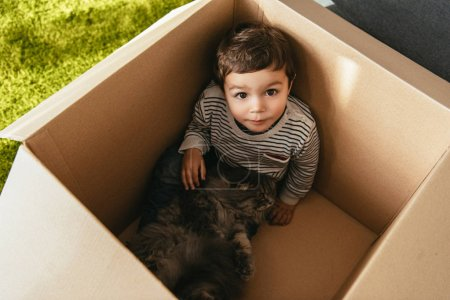 high angle view of cute little kid with british longhair cat sitting in cardboard box