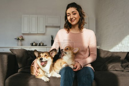 attractive woman sitting on sofa with welsh corgi dogs at home