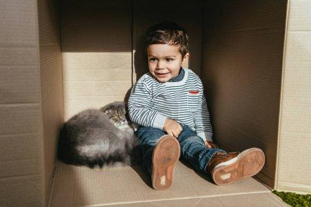 smiling boy sitting with british longhair cat in cardboard box