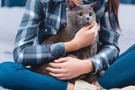 cropped shot of young woman sitting on bed and hugging adorable grey cat