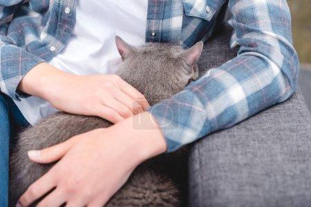 Photo pour Photo recadrée de femme assise sur le canapé avec joli chat gris - image libre de droit