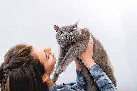 Photo pour Cat de belle jeune femme tenue adorable british shorthair - image libre de droit