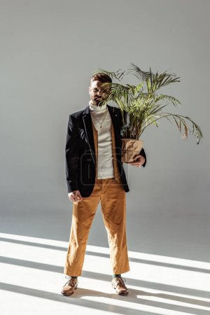 Photo for Handsome bearded man in glasses holding green plant in pot and looking at camera on grey background - Royalty Free Image