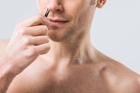 Photo for Cropped view of man plucking hair with tweezers from nose, isolated on grey - Royalty Free Image