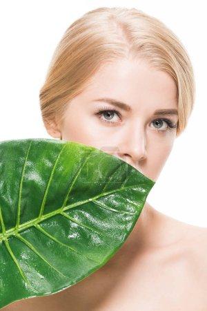 Photo pour Belle fille nue avec feuille tropicale verte près du visage en regardant la caméra isolée sur blanc - image libre de droit