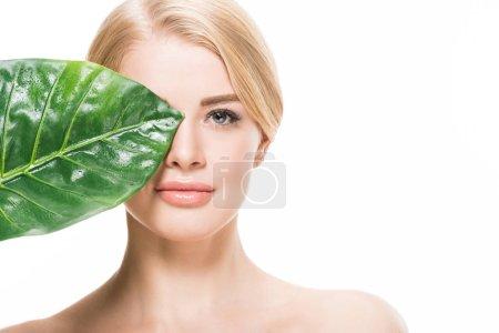 Photo pour Attrayant nu fille avec vert feuille tropicale près des yeux en regardant caméra isolé sur blanc - image libre de droit