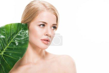 Photo pour Attrayant fille nue avec vert feuille tropicale regardant loin isolé sur blanc - image libre de droit