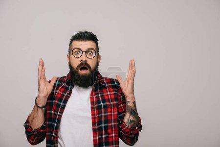 Foto de Hombre barbudo sorprendió en camisa a cuadros gesticular aislado en gris - Imagen libre de derechos