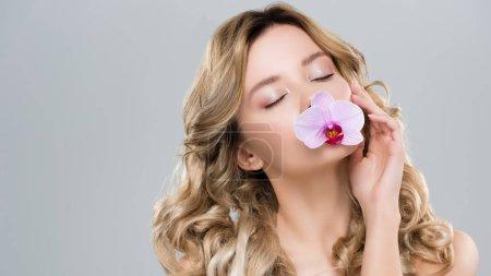Photo pour Jeune nu attrayant femme tenant orchidée pourpre dans la bouche isolé sur gris - image libre de droit