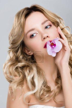 Photo pour Jeune élégante belle femme tenant orchidée pourpre dans la bouche isolé sur gris - image libre de droit