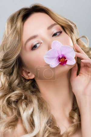 young tender attractive woman holding purple orchid in mouth isolated on grey