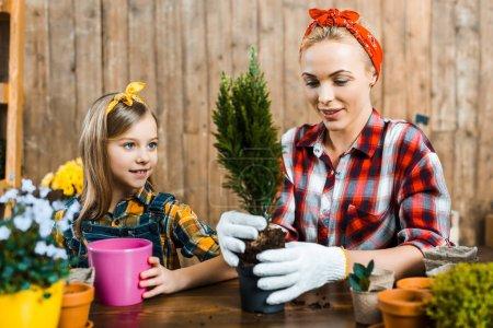 Foto de Hermosa mujer trasplantando la planta verde en la olla junto a la hija Linda - Imagen libre de derechos