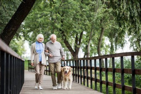 Senior couple walking across wooden bridge with do...