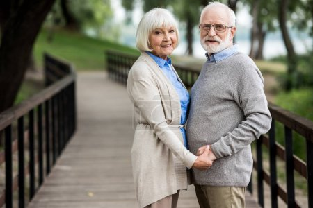 Photo for Happy senior couple standing on wooden bridge and holding hands - Royalty Free Image