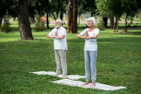 Photo pour Heureux couple aîné pratiquant la méditation sukhasana pose debout avec les mains pliées - image libre de droit