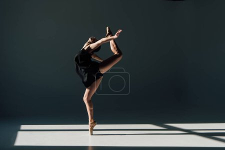 Photo for Beautiful young ballerina dancing in sunlight - Royalty Free Image