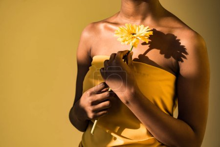 Cropped view of african american woman holding flower on brown