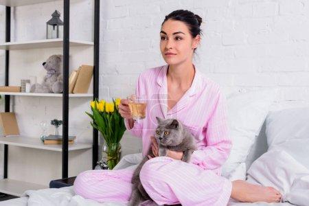 Photo pour Femme avec tasse de thé et la Grande-Bretagne chat shorthair reposant sur le lit à la maison - image libre de droit