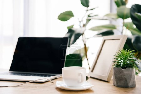 closeup view of coffee cup, laptop, potted plants and photo frame on table