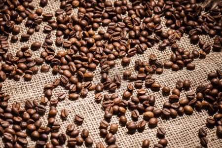 high angle view of roasted coffee beans spilled on sackcloth