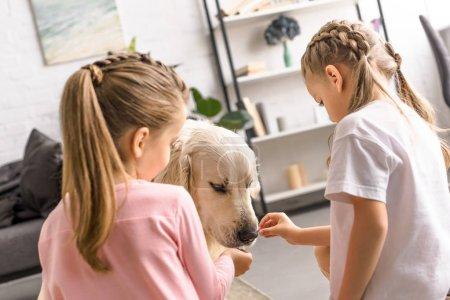 little kids feeding golden retriever dog with treats at home