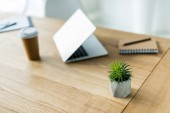 laptop, coffee in paper cup and green plant on wooden table in office