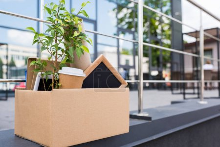 potted plant and coffee in paper cup in paper box on street near office building
