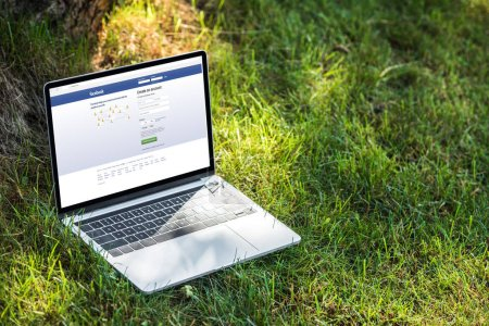 Photo for Close up view of laptop with facebook website on grass outdoors - Royalty Free Image