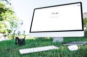 selective focus of textbook and computer with google website on grass outdoors