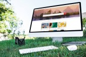 selective focus of textbook and computer with shutterstock website on grass outdoors