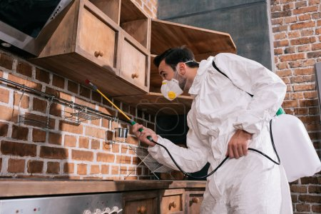 pest control worker spraying pesticides under shelves in kitchen