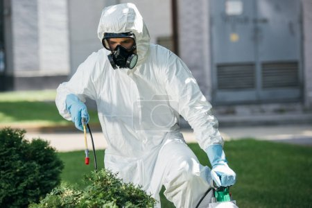 male pest control worker in uniform spraying chemicals on bush