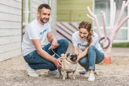 two volunteers of animals shelter palming pug dog on yard