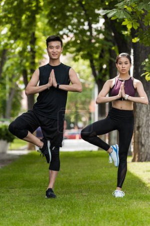 young asian sportsman and sportswoman standing in vrksasana (tree pose) and doing namaste gesture on grass in park
