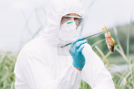 focused male scientist in protective suit and mask examining fish outdoors