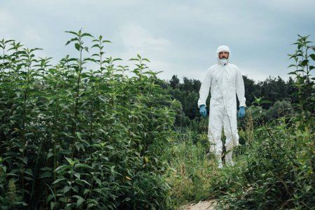 Photo for Male scientist in protective suit and latex gloves standing in meadow - Royalty Free Image