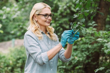 smiling female scientist examining green leaves by magnifying glass in forest