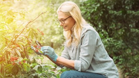 smiling female scientist in latex gloves looking at rowans by magnifying glass in forest