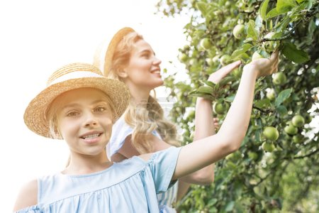 smiling mother and daughter picking apples in orchard with sunlight
