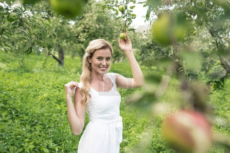 cheerful woman in white dress spending time in apple garden