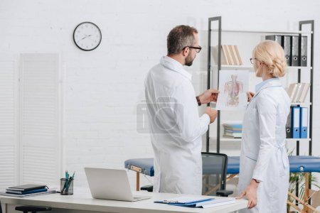 Photo for Back view of physiotherapists in white coats and eyeglasses discussing work in clinic - Royalty Free Image