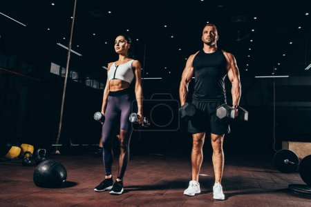 Photo for Fit sportsman and sportswoman exercising with dumbbells together in dark gym - Royalty Free Image