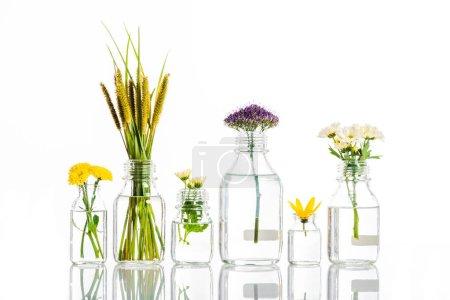 Photo pour Bocaux en verre avec fleurs isolées sur le concept de médecine blanc, autre - image libre de droit