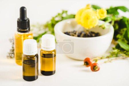 Foto de Botellas de aceites esenciales y hierbas en la superficie blanca - Imagen libre de derechos