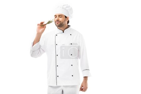handsome young chef smelling thymes herb isolated on white