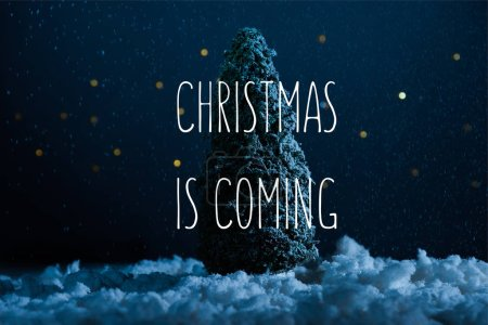 """close-up shot of miniature christmas tree standing in snow at night with """"christmas is coming"""" inspiration"""