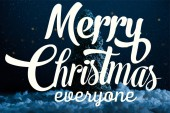 """close-up shot of miniature christmas tree standing in snow at night with """"merry christmas everyone"""" lettering"""