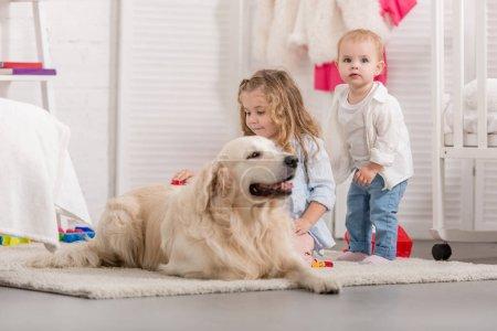 adorable kids palming golden retriever in children room